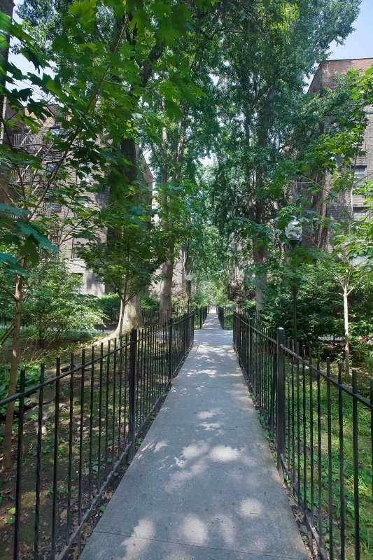 Great 3br in Harlem!
